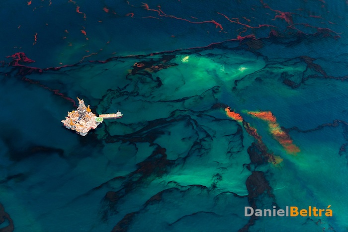 Oil in the Gulf of Mexico