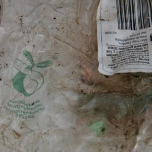 PLA foil in home compost result after 93 days